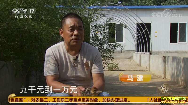 """[致富经]河南荥阳马建""""鸵鸟谷""""里的多样财富"""