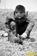重庆璧山曾永龙野外放养兔子价高市场供不应求
