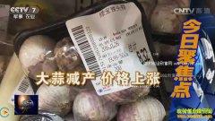 [聚焦三农]大蒜价格行情分析 大蒜价格缘何高位徘徊