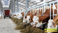 2017年河南省畜牧业项目补贴政策