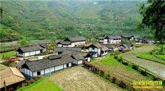 2017年贵州省重点扶持哪些农村致富项目?