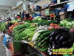 气温回升 天津蔬菜价格持续下降