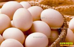 山西太原鸡蛋价格触底反弹 蛋鸡去产能效果显现