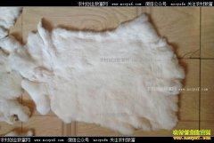 2017年10月18日河北尚村皮毛市场獭兔皮行情价格