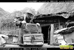 重庆开州八旬老人谭孝忠的养蜂致富经