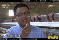[科技苑]刘永军让鸡产下想要的蛋