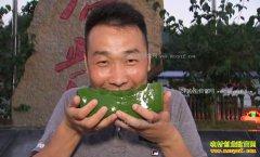 [致富经]重庆奉节陈波神仙树做豆腐赚快钱日入十万