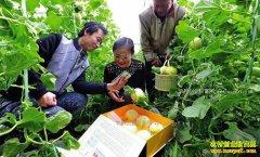 农产品怎么才能卖得好?专家建议讲好产品故事很关键