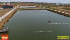 [科技苑]甘肃景泰县:盐碱水养鱼虾效益高