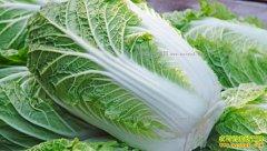 冬储菜价格亲民 白菜价格降至五年最低