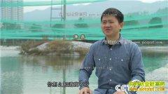 [致富经]浙江东阳潘磊养红泥鳅年入3000万的秘密