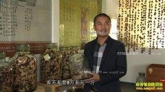[致富经]广东新会黄建社加工陈皮赚钱快年销5000万