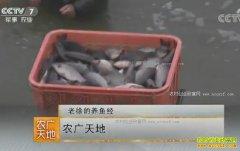 [农广天地]江苏盐城徐林松的养鱼致富经