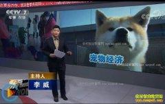 """[聚焦三农]宠物狗如何""""养""""出大市场"""