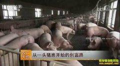 [农广天地]吉林东辽县于华从一头猪崽开始的创富路