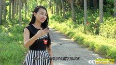 [致富经]海南万宁90后女主播赵应琼卖粽子换身衣服赚百万