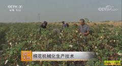 [农广天地]棉花机械化生产技术视频