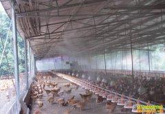 养殖场如何选用消毒药?