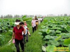 发展暑期休闲农业怎样才能多盈利?