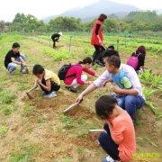 开一家亲子农场怎么养?什么样的亲子农场最受欢迎?