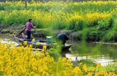 养生农业前景广阔 良性发展还需多方努力