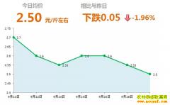 2018年9月27日山东昌邑、安丘最新生姜价格行情