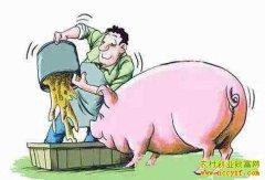 多省出台细则严查泔水养猪,最高罚3万!