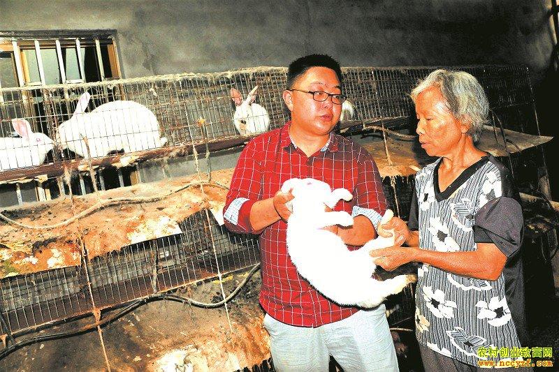 陈强�v左�w指导黄作群养种兔
