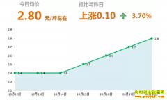 2018年10月18日山东昌邑、安丘最新大姜(鲜姜)价格行情