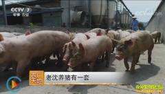[农广天地]浙江湖州沈顺新养猪有一套