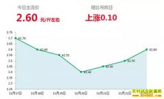 2018年11月23日山东昌邑、安丘最新生姜价格行情