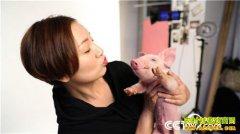 [致富经]湖南湘阴县美女老师夏春霞快乐养猪一头多卖3000多元