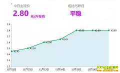 2018年11月27日山东昌邑、安丘最新生姜价格行情