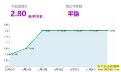 2018年11月29日山东昌邑、安丘最新生姜价格行情