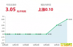 2018年12月2日山东昌邑、安丘最新生姜(鲜姜)价格行情