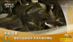[致富经]鱼虾玩出新花样 俞淳和孟凡佳养殖鱼虾好赚钱