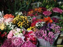 临近年底鲜切花市场火热 鲜花价格销量齐增