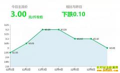 2018年12月7日山东昌邑、安丘大姜(鲜姜)最新价格行情
