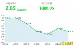 2018年12月11日山东昌邑、安丘黄姜(新姜)最新价格行情