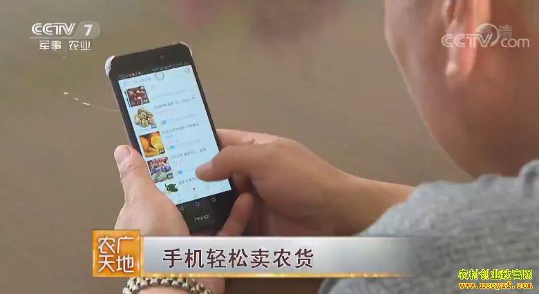 [农广天地]怎样用手机轻松卖农货