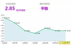 2018年12月12日山东昌邑、安丘黄姜(新姜)最新价格行情