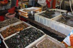 2019年春节前海鲜市场行情预测