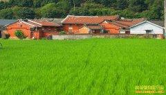 农村创业干什么小生意能赚钱?推荐6个农村创业项目