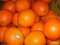 重庆巫山县李丁娅网络直播3天出售柑橘2.5万斤