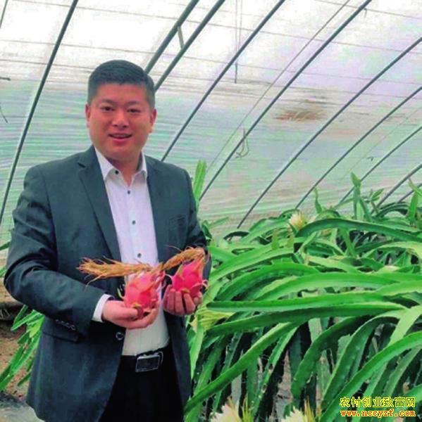 陕西翟文波用短视频创造网上销售火龙果神话