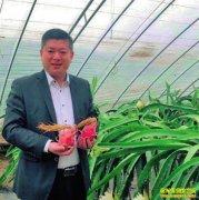 陕西西安翟文波用短视频创造网上销售火龙果神话