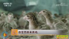 [农广天地]广东龙川县李坚改变思路来养鸡