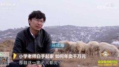 [致富经]甘肃小学老师马成海白手起家养羊年卖千万元