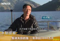 [致富经]广东佛山何杰秋澜沧江里养鱼赚钱有门道