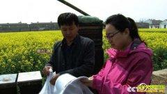 [致富经]安徽芜湖崔红旗养蜂酿出能嚼着吃的蜂蜜年销千万